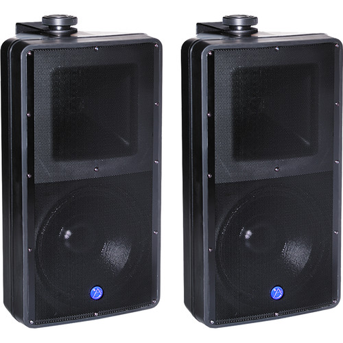 Atlas Sound 2-Way SM82T Speaker System (Black)