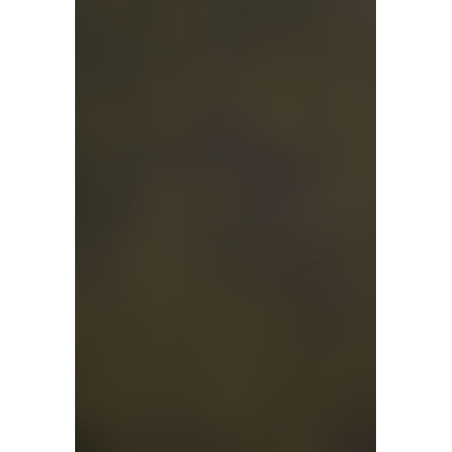 Backdrop Alley BAM12ESPRS Solid Muslin Background (10 x 12', Espresso)