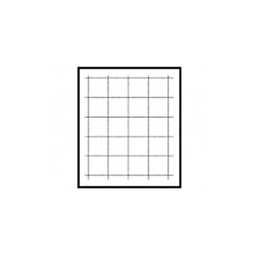 Beattie Intenscreen Focusing Screen - Matte w/ Grid-Lines