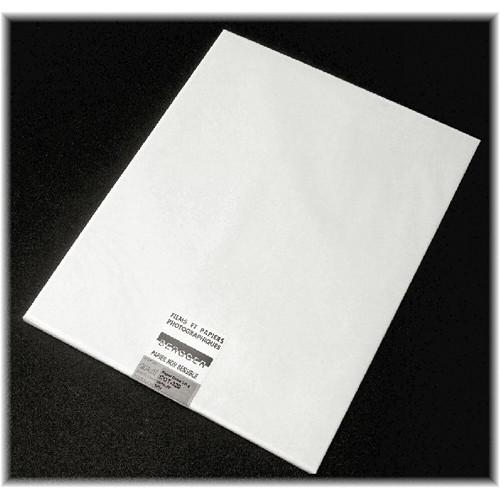 "Bergger COT320 100% Cotton Paper (30 x 44"", 25 Sheets)"