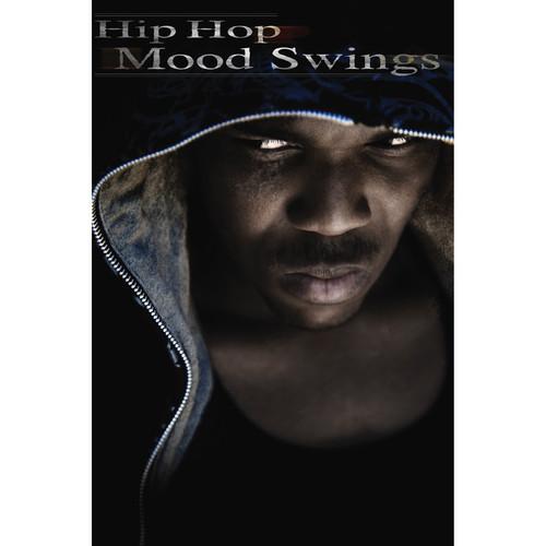 Big Fish Audio Hip Hop Mood Swings DVD (Apple Loops, REX, WAV, & RMX Format)