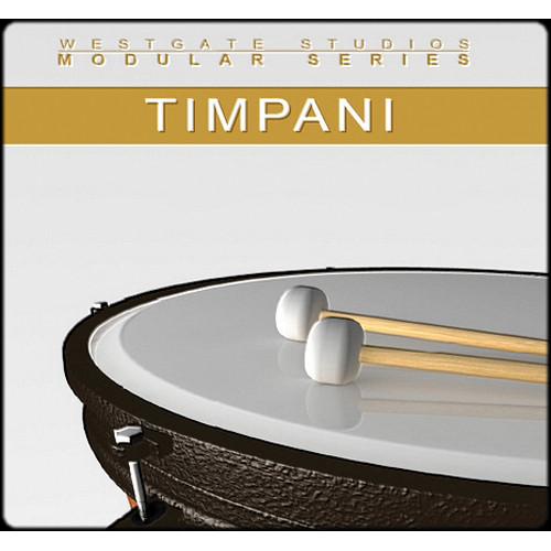 Big Fish Audio Timpani Modular Series DVD (Gigastudio 3 & Kontakt 2 Formats)
