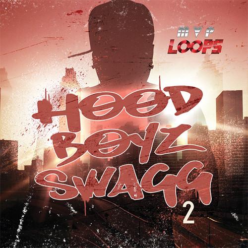Big Fish Audio Hood Boyz Swagg 2 DVD (Apple Loops, REX, WAV, ACID Formats)