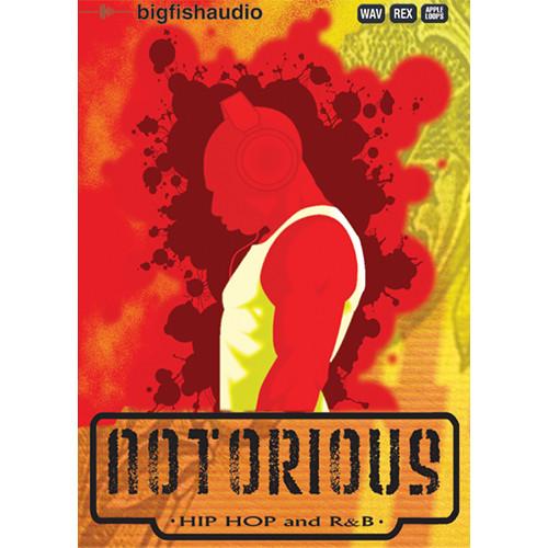 Big Fish Audio Notorious: Hip Hop and R&B DVD (Apple Loops, REX, WAV, & RMX Formats)