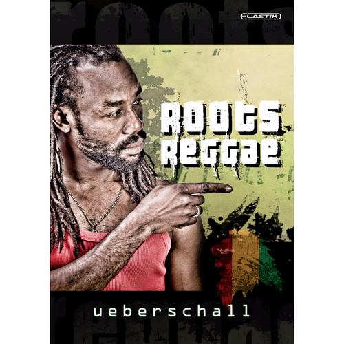 Big Fish Audio DVD: Roots Reggae