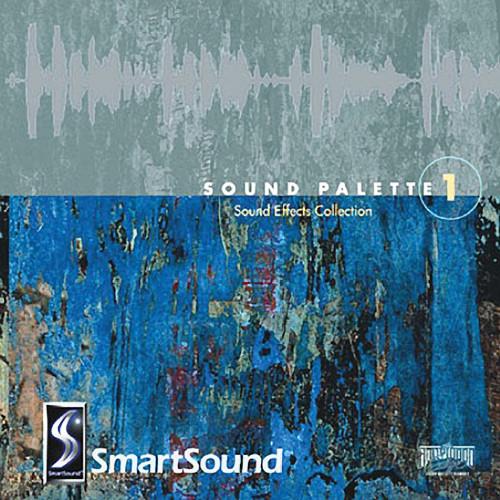 Big Fish Audio Sound Palette Techno DVD (AIFF, Audio, & WAV Formats)