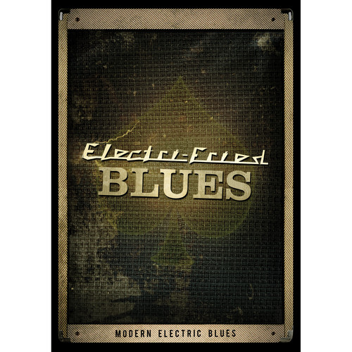 Big Fish Audio Electri-Fried Blues DVD (Apple Loops, REX, WAV, RMX and Acid Formats)