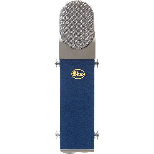 Blue Blueberry Microphone