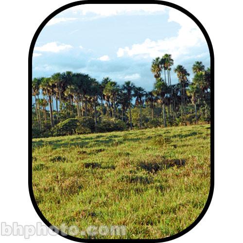 Botero #C719 5x7 Scenic Background