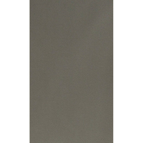 Botero #051 Muslin Background (10x24', Dark Gray)