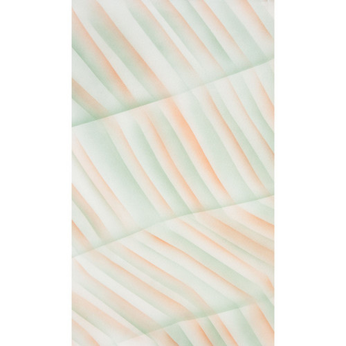 Botero #054 Muslin Background (10 x 24', Green, Orange, White )