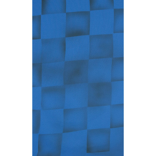 Botero #059 Muslin Background (10 x 12', Blue, Gray )