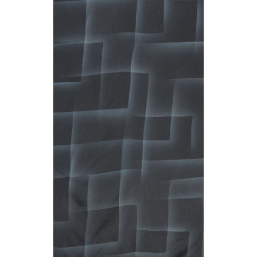 Botero #062 Muslin Background (10 x 24', Black, White )