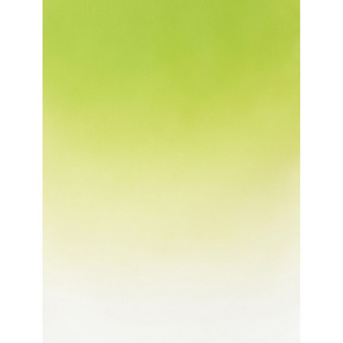 Botero #402 Muslin Graduated Background (5 x 7', Green, White)