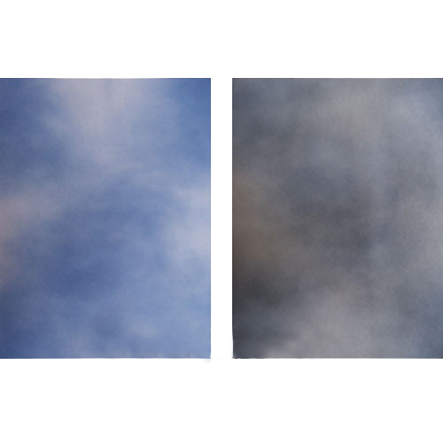 Botero Double-Sided Muslin Background (10 x 12', Gray, White / Blue, White)