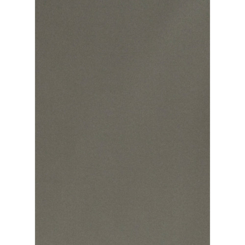 Botero #051 Muslin Background for Rotary System ONLY (5 x 7', Dark Gray)