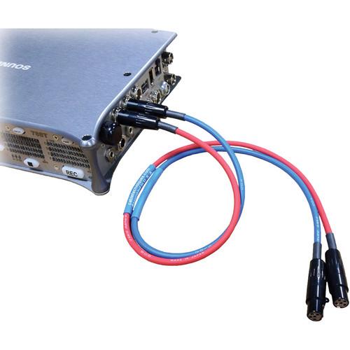 Cable Techniques CT-PCL-18 Lectrosonics Interface Cable (Set of 2)