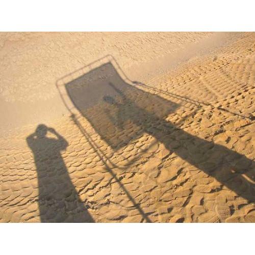 Sunbounce Sun-Swatter Big Translucent -3/3 Diffuser Screen (6 x 8')
