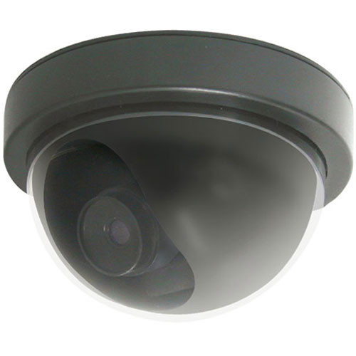 Clover Electronics DU513 Indoor Simulated Ceiling Mount Dome Camera