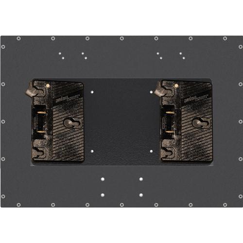 DIT MMR-BM.AB2 Dual Anton Bauer Gold Mount