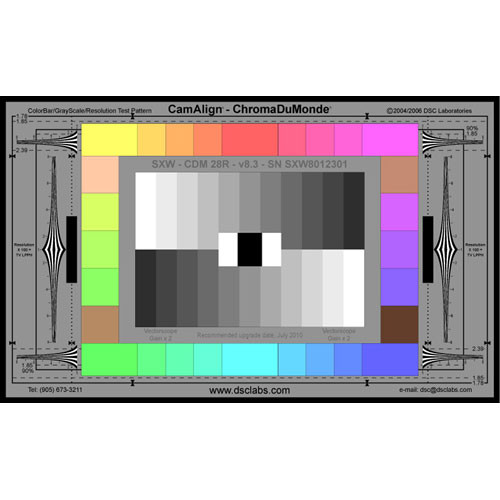 DSC Labs ChromaDuMonde 28-R Super Maxi CamAlign Chip Chart with Resolution Trumpets
