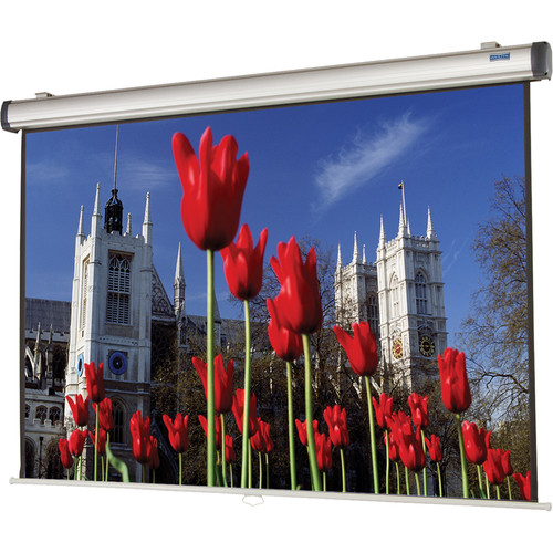 "Da-Lite 38828 Easy Install Manual Projection Screen with CSR (94 x 94"")"