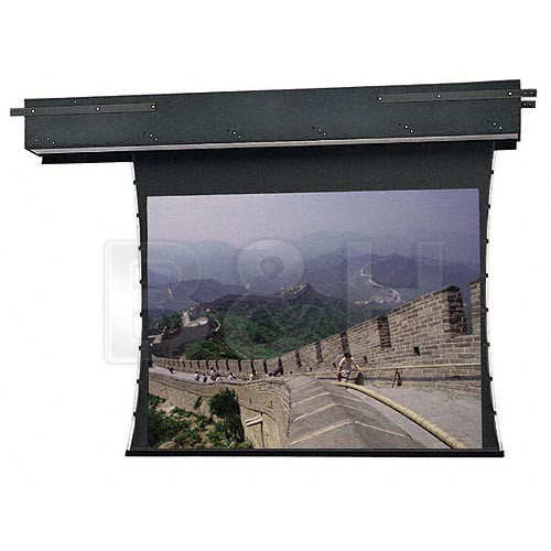 Da-Lite 81060 Executive Electrol Motorized Projection Screen (9 x 9')