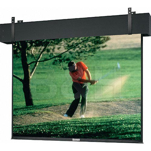 "Da-Lite 81679 Professional Electrol Motorized Projection Screen (16'6"" x 22')"