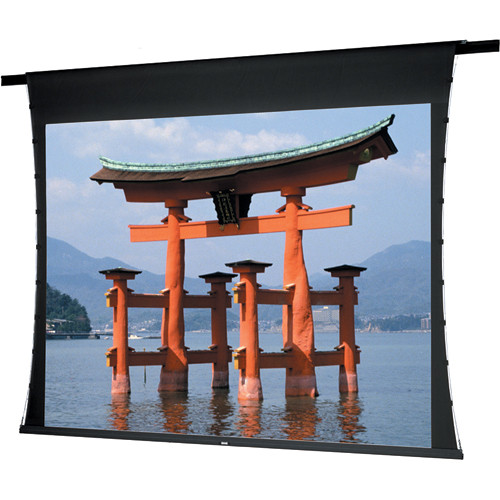 """Da-Lite 88169F Fabric and Roller ONLY for the Advantage Deluxe Projection Screen (50 x 50"""")"""