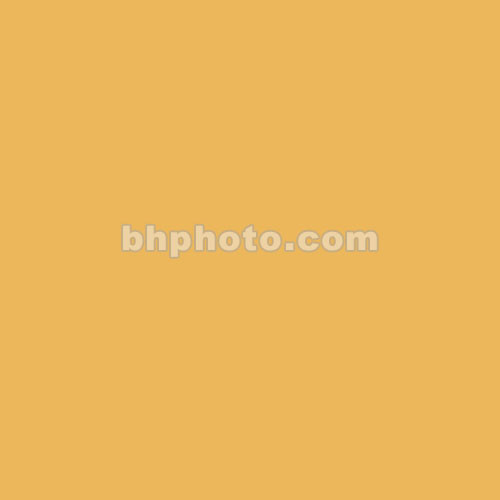 Dedolight Tungsten Conversion Filter for Dedolight DLH400D