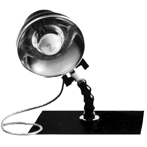 Delta 1 Magnetic Light Stand Base and Ceiling Boom