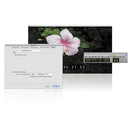 Avid Video Satellite LE - Video Playback Solution
