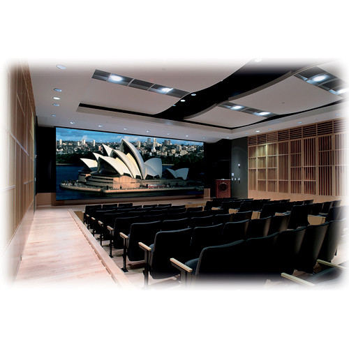 "Draper 114607 Paragon/Series V Motorized Projection Screen (216 x 288"")"