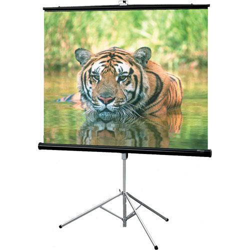 "Draper 216008 Consul Portable Tripod Screen  (70 x 70"")"