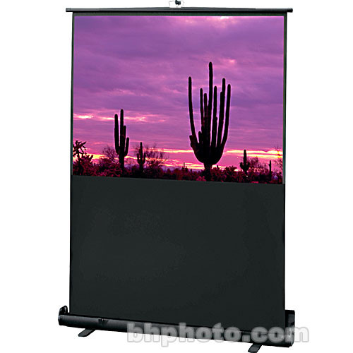"Draper 230006 Road Warrior Portable Projection Screen (36 x 64"")"