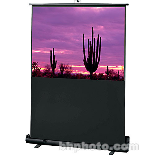 "Draper 230049 Road Warrior Portable Projection Screen (27 x 48"")"
