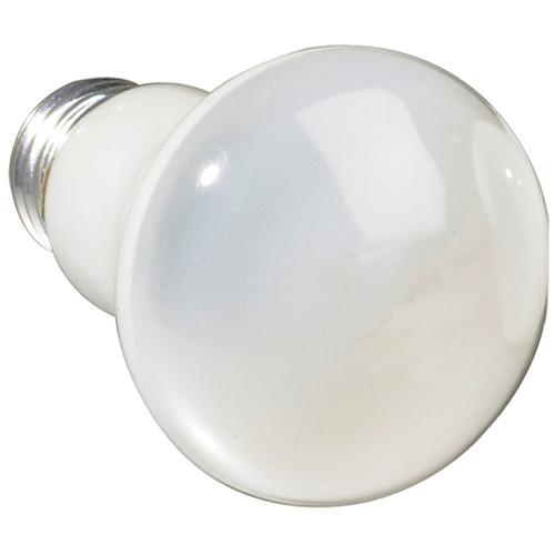 Eiko R-19 Modeling Lamp (100W/120V)