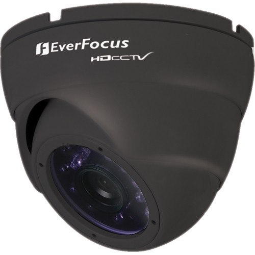 EverFocus EBH5241B HDcctv Outdoor Ball Camera (Black)