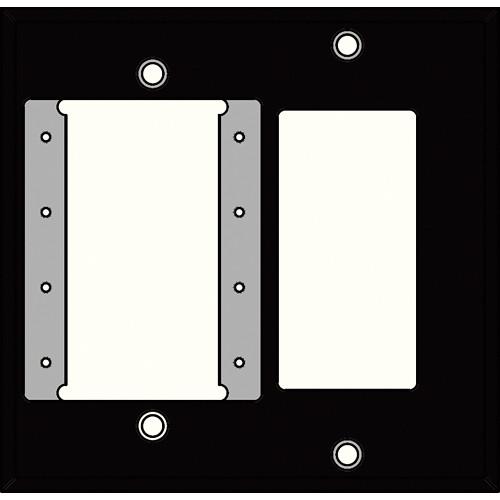 FSR IPSPWP2D-BLK 2 Gang Wall Plate (Black)