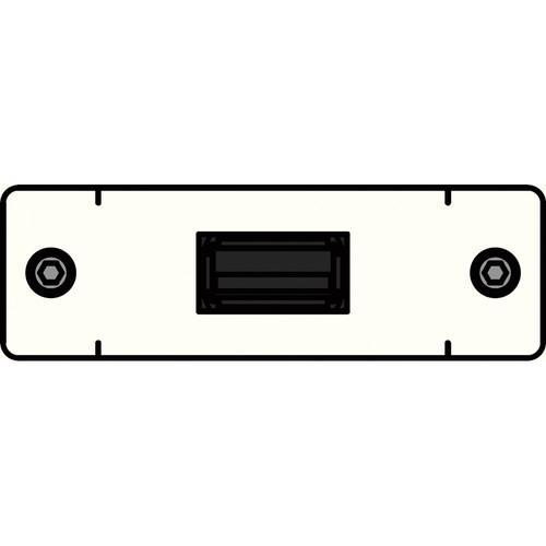 FSR IPS-D715S-WHT  IPS Voice/Data Insert (White)