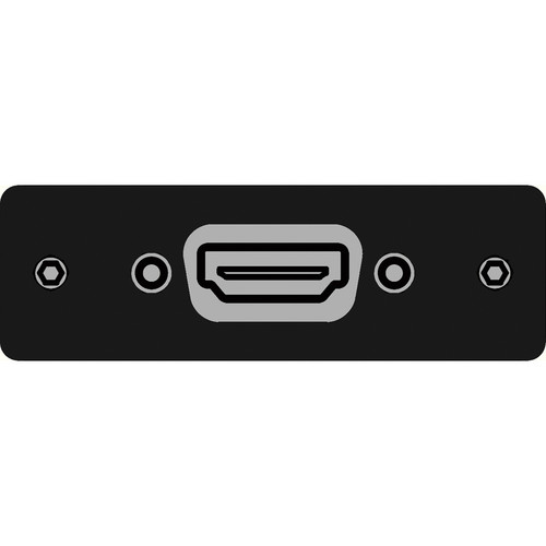 FSR IPS-V610S-BLK HDMI Female  to HDMI Female Insert Plate (Black)