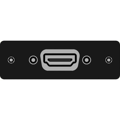 FSR IPS-V610S-BLK HDMI Female  to HDMI Female Insert Plate (Black)