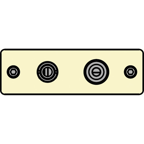 FSR IPS-V922S-IVO BNC (YEL) to BNC-S-Video to S-Video Insert Plate (Ivory)