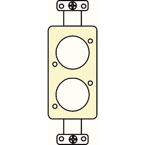 FSR SS-P2XLR-IVO Decora Insert with 2 Neutrik D-Holes (Ivory)