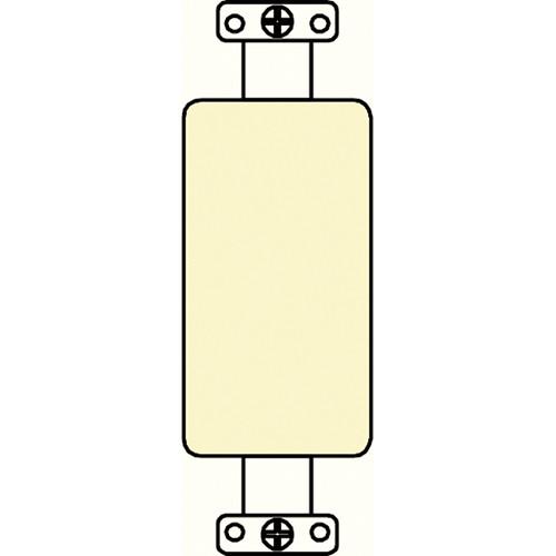 FSR SS-PBLNK-IVO Blank Plate (Ivory)