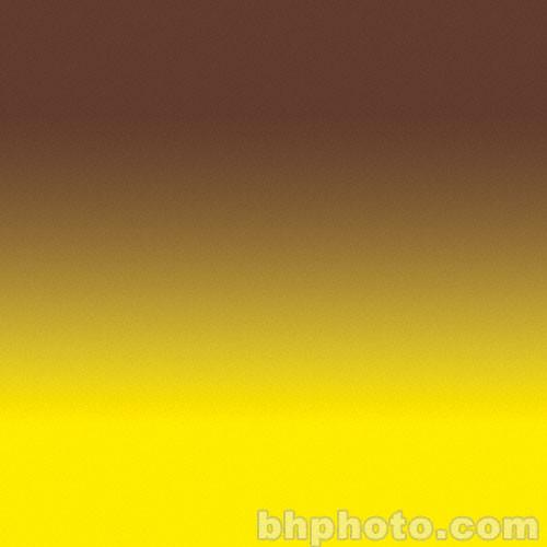 "Flotone Graduated Background - 43x63"" - Sienna"