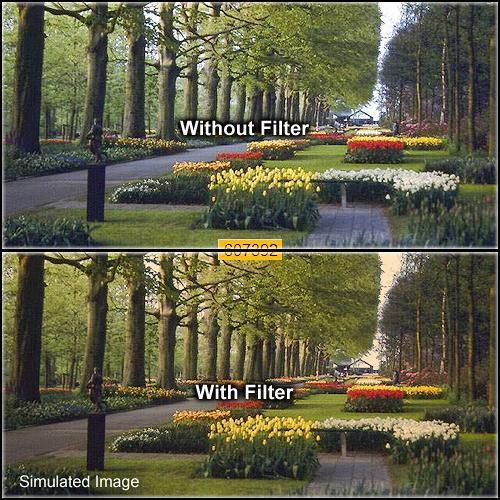 Formatt Hitech 43mm Solid Tangerine 1 Filter