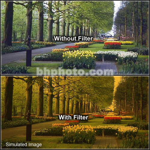 "Formatt Hitech 4x5.65"" Solid Color Tangerine  3 Glass Filter"