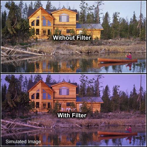 """Formatt Hitech Solid Grape Filter (4 x 4"""")"""