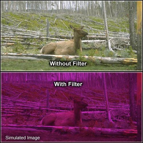 """Formatt Hitech Solid Plum Filter (4 x 4"""")"""
